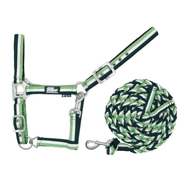 CA00012A-cavezza-verde